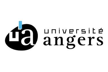 master-fle-universite-angers-lecafedufle