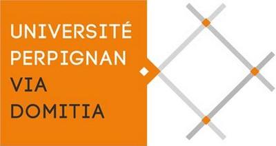 master-fle-universite-perpignan-via-domitia-lecafedufle