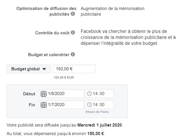 promouvoir-publicité-placement-FLE-budget-français-cours